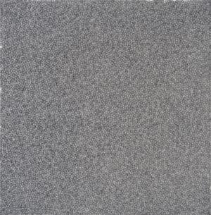 Fingerprints 2015.2-3 指印 2015.2-3 by Zhang Yu contemporary artwork