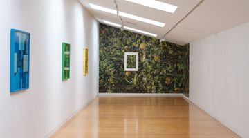 Contemporary art exhibition, Shaun Waugh, Encounter at Two Rooms, Auckland, New Zealand