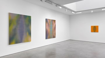 Contemporary art exhibition, Roy Colmer, Roy Colmer at Lisson Gallery, London