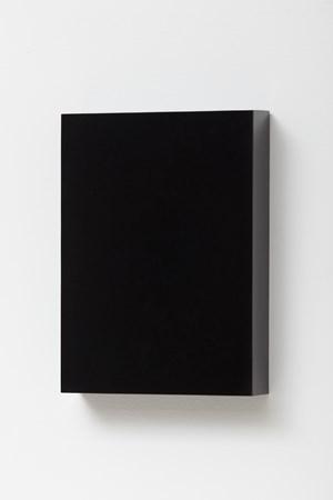 Black Mirror by Antonio Dias contemporary artwork