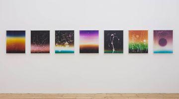 Contemporary art exhibition, Anne Hardy, Rising Heat at Maureen Paley, STUDIO M, United Kingdom