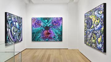 Contemporary art exhibition, Kenny Scharf, Vaxi Nation at Almine Rech, Avenue Matignon, Paris, France