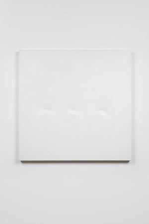 3 ovali bianchi by Turi Simeti contemporary artwork