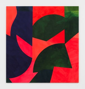 Rotating Wings by Sarah Crowner contemporary artwork