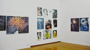 Contemporary art exhibition, Ben Webb, Collapsing at Jonathan Smart Gallery, Christchurch