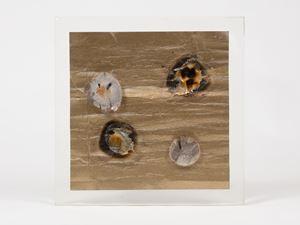 Cosmic Sea I by Liliane Lijn contemporary artwork