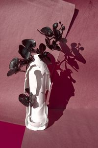 babushka by Thirza Schaap contemporary artwork photography