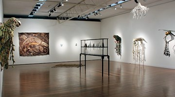 Contemporary art exhibition, Fiona Hall, Shot Through at Roslyn Oxley9 Gallery, Sydney
