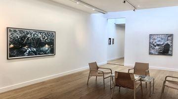 Contemporary art exhibition, Jasper de Beijer, The Admiral's Headache at FLATLAND, Amsterdam