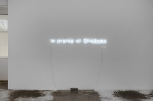 In praise of Shadows by Cerith Wyn Evans contemporary artwork