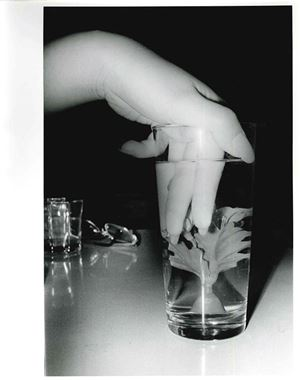 Artificial Underwater Flower by Daido Moriyama contemporary artwork