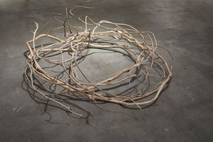 Rope by Hiroto Nakanishi contemporary artwork