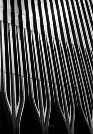 Brush by Fernando Zaccaria contemporary artwork