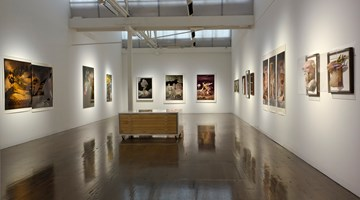 Contemporary art exhibition, Rose Farrell & George Parkin, Rose & George at Arc One Gallery, Melbourne