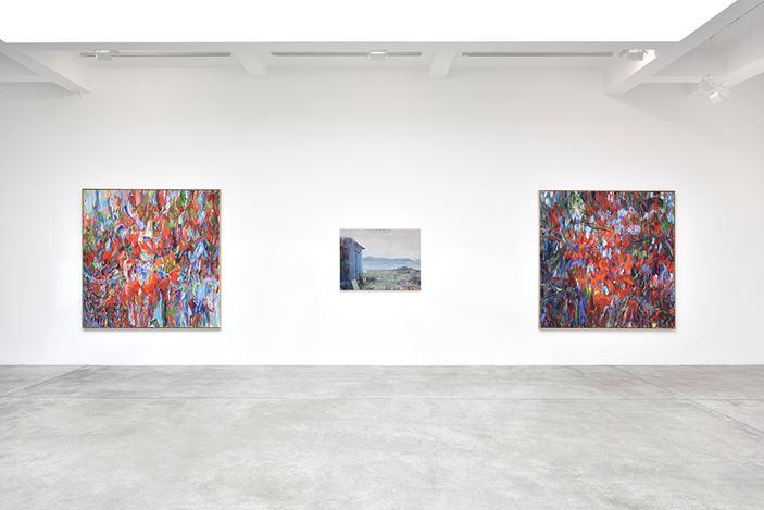 Exhibition view: Sabine Moritz, deeply unaware, Galerie Marian Goodman, Paris (11 September–26 October 2019). Courtesy Galerie Marian Goodman.