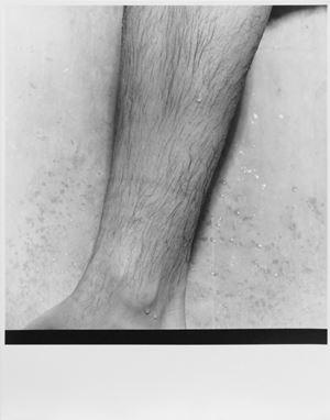 Leg by Moyra Davey contemporary artwork photography