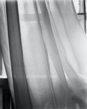 Our bedroom curtain, Brookline by Nicholas Nixon contemporary artwork