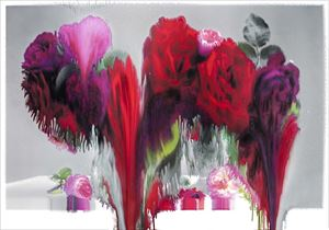 Rose 7 by Nick Knight contemporary artwork