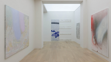 Contemporary art exhibition, J. Elrod, M. Faldbakken, B. Frize, D. Ostrowski, H. Scott-Douglas, C. Wool, T. Ziegler, H. Zobernig, Walk the Line at Simon Lee Gallery, Hong Kong, SAR, China