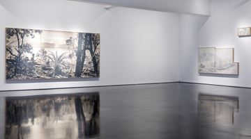 Contemporary art exhibition, Danie Mellor, The Sun Also Sets at Tolarno Galleries, Online Only, Melbourne