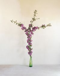 Untitled (crabapple branch) by Alec Soth contemporary artwork photography, print