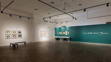 Meem Gallery contemporary art gallery in Dubai, UAE
