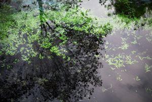 Aynadamar, The Fountain of Tears, (II) / Aynadamar, La Fuente de las Lágrimas (II) by Willie Doherty contemporary artwork