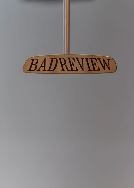 Bad Review by Fiona Banner contemporary artwork