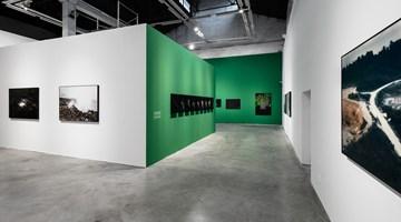 Contemporary art exhibition, Robert Zhao Renhui, Christmas Island, Naturally at ShanghART, M50, Shanghai