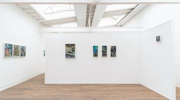 Contemporary art exhibition, Group Exhibition, Insights and Outlooks. The lush visual worlds of Wolf Hamm and Hartmut Neumann at Beck & Eggeling International Fine Art, Düsseldorf, Germany