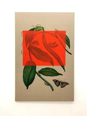 Elaeis guineensis by Gabriela Bettini contemporary artwork