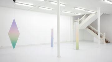 Contemporary art exhibition, Jonny Niesche, Poikilos at Starkwhite, Auckland