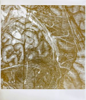 untitled woodcut I (inside out) by Sam Harrison contemporary artwork