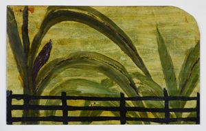Banana Plants and Fence by Frank Walter contemporary artwork
