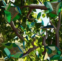 Energy Tree, Waitītiko Creek by Kate Woods contemporary artwork photography, print