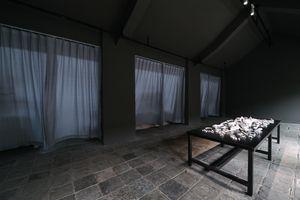 Full Set of Bones by Zhang Peili contemporary artwork