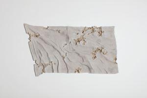 Glacial Rock Eroded Flag by Daniel Arsham contemporary artwork