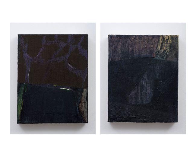 The Edge & The Dive by Biraaj Dodiya contemporary artwork
