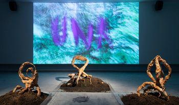Shanghai Biennale Mobilises Trans-Species Alliances
