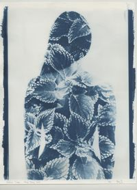 'Coleus Lara', PHOTOSYNTHESIS, Hong Kong by Ben Felten contemporary artwork photography, print