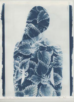 'Coleus Lara', PHOTOSYNTHESIS, Hong Kong by Ben Felten contemporary artwork