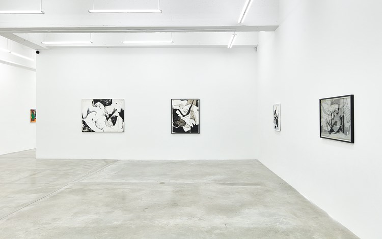 Exhibition view: Wook-Kyung Choi, Solo Exhibition, Tina Kim Gallery, New York (14 September–21 October 2017). Courtesy Tina Kim Gallery, New York.