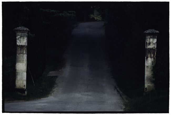 Untitled (CL SH592 N24) by Bill Henson contemporary artwork