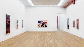 Contemporary art exhibition, Roe Ethridge, Sanctuary 2 at Andrew Kreps Gallery, 22 Cortlandt Alley, New York
