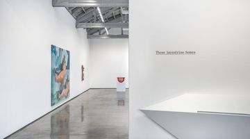 Contemporary art exhibition, Group Exhibition, These lacustrine homes curated by Mai-Thu Perret at David Kordansky Gallery, Los Angeles
