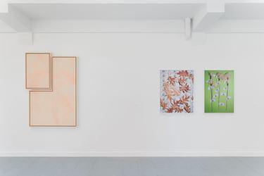 Exhibition view: E X I T, curated by Adam Carr, rodolphe janssen (22 June–20 July 2017). Courtesy rodolphe janssen.Photo: Hugard & Vanoverschelde photography
