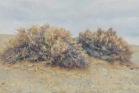 Sacsaoul desert 梭梭荒漠 by Lu Liang contemporary artwork painting