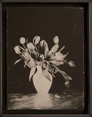 Tulpen by Steffen Diemer contemporary artwork