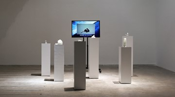 Contemporary art exhibition, Feng Bingyi, Cold Truth at A Thousand Plateaus Art Space, Chengdu