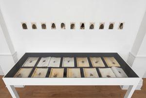 Meine verlorenen Haare [My lost hair] by Annegret Soltau contemporary artwork